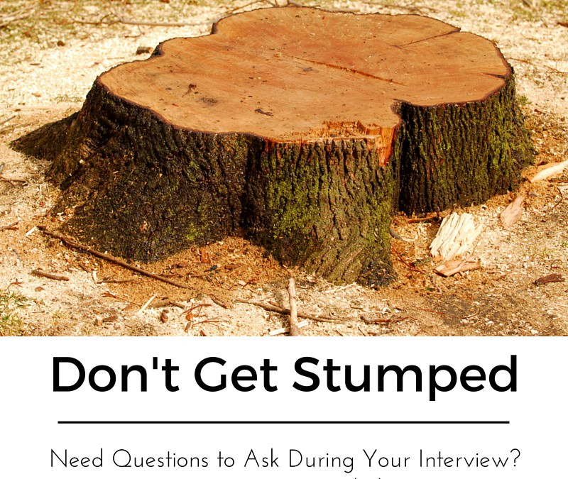 Download 250 job interview questions pdf