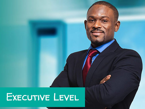 Executive Resumes | Writing & Editing | Effective & Affordable